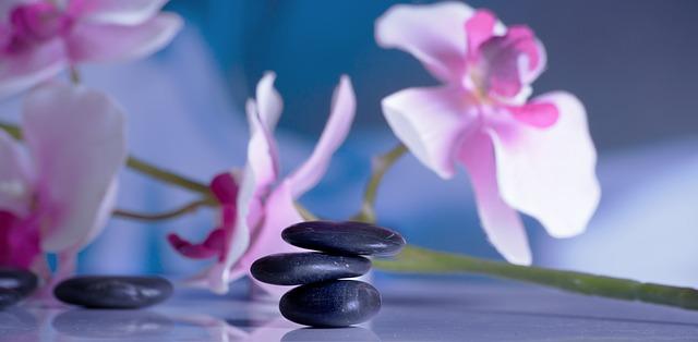 kameny u kytky