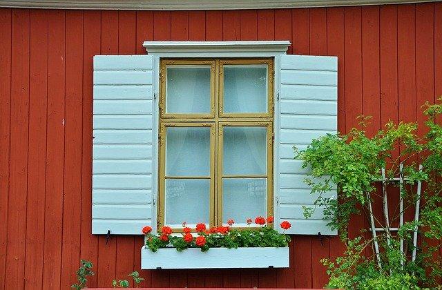 muškáty pod oknem.jpg